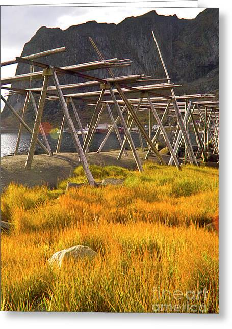 Fall Grass Greeting Cards - Golden gras and fish drying rack Greeting Card by Heiko Koehrer-Wagner