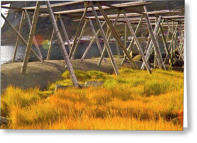 Golden gras and fish drying rack Greeting Card by Heiko Koehrer-Wagner