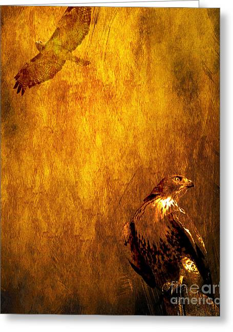 Red Tail Hawk Digital Art Greeting Cards - Golden Hawk 4 Greeting Card by Wingsdomain Art and Photography