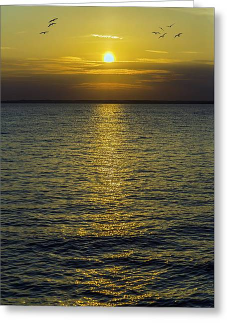 Star Greeting Cards - Golden Horizon Greeting Card by Brian Wallace