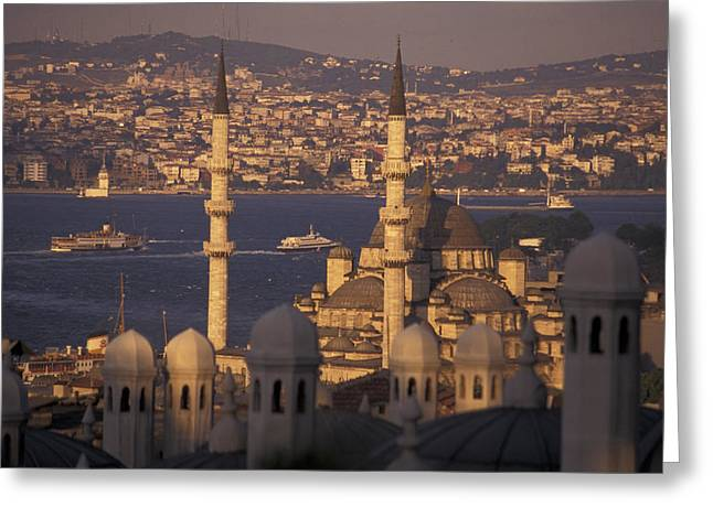 Golden Horn Greeting Cards - Golden Horn From Suleymaniye Mosque Greeting Card by Richard Nowitz