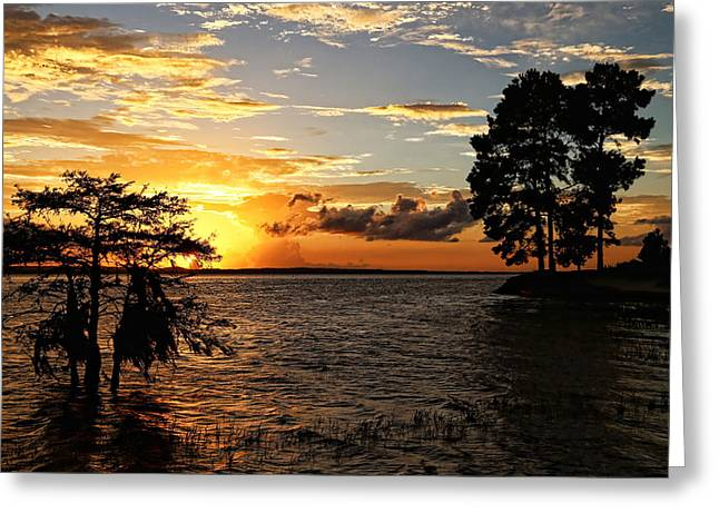 Toledo Bend Greeting Cards - Golden Hour at the Lake Greeting Card by Judy Vincent