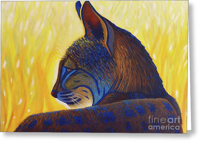 Golden Hour Bobcat Greeting Card by Brian Commerford