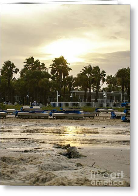 Beach Photography Greeting Cards - Golden Morning After Greeting Card by Jennifer White
