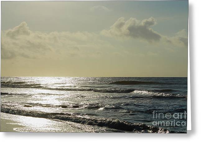 Ocean Art Photos Greeting Cards - Golden Morning On Folly Greeting Card by Jennifer White