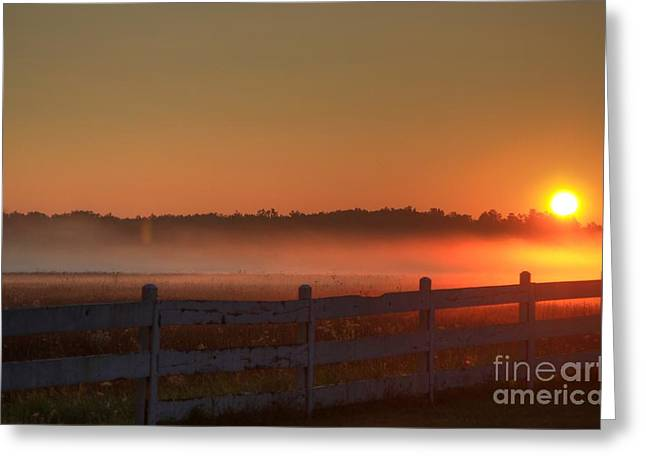White River Scene Mixed Media Greeting Cards - Golden Morning Greeting Card by Robert Pearson