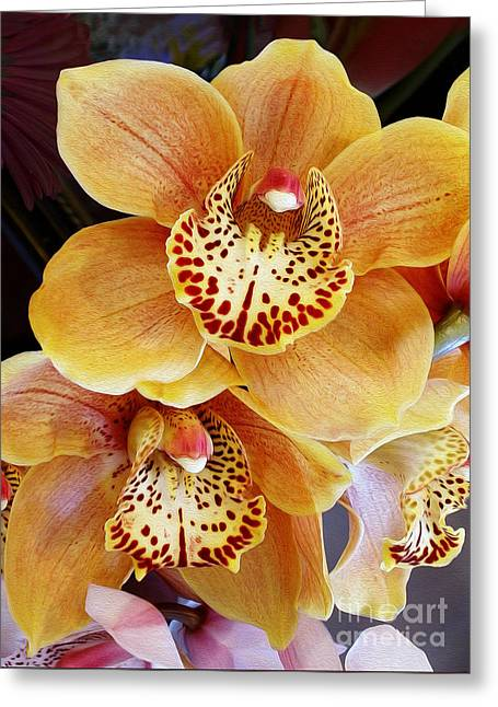 Golden Pink Orchid Greeting Cards - Golden Orchid Greeting Card by Kaye Menner