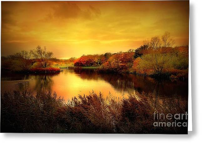 Golden Pond Greeting Cards - Golden Pond Greeting Card by Photodream Art