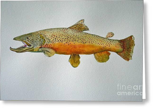 Rainbow Trout Greeting Cards - Golden Rainbow Trout Greeting Card by Terri Robertson