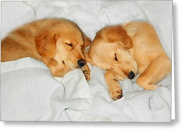 Sleeping Dogs Greeting Cards - Golden Retriever Dog Puppies Sleeping Greeting Card by Jennie Marie Schell