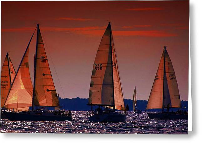 Cheryl Cencich Greeting Cards - Golden Sails Greeting Card by Cheryl Cencich
