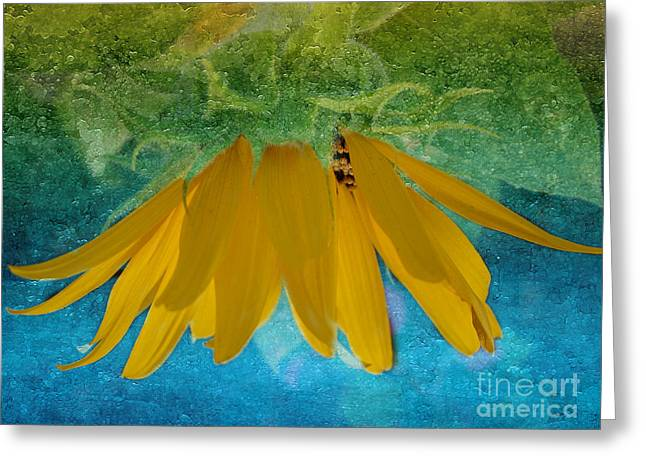 Yellow Sunflower Greeting Cards - Golden Sun Greeting Card by Beverly Guilliams