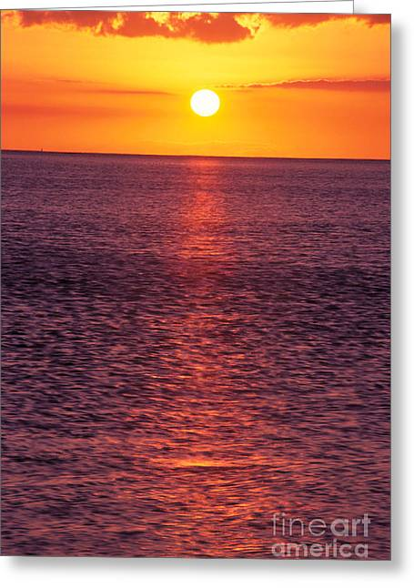 Amazing Sunset Greeting Cards - Golden Sunball Greeting Card by Tomas del Amo - Printscapes