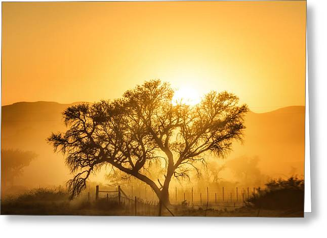 Fence Greeting Cards - Golden Sunrise Greeting Card by Piet Flour