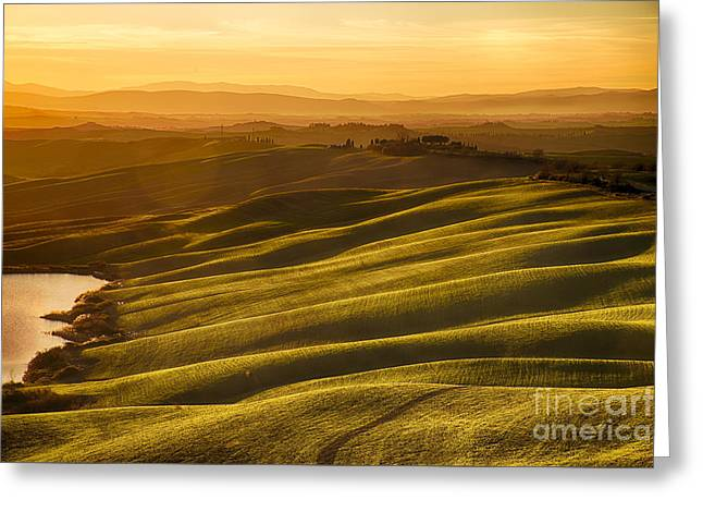 Tuscan Sunset Greeting Cards - Golden Sunset Greeting Card by Maurizio Martini