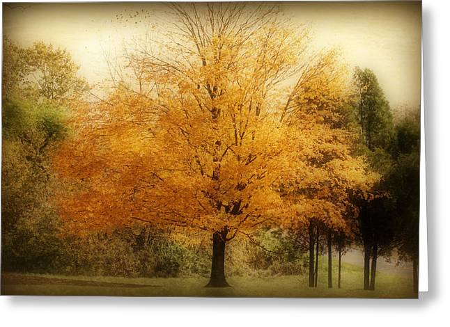 Indiana Art Greeting Cards - Golden Tree Greeting Card by Sandy Keeton