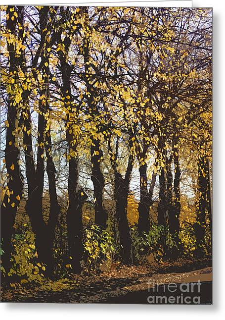 Autumn Art Greeting Cards - Golden trees 1 Greeting Card by Carol Lynch