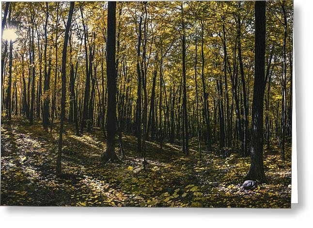 Golden Woods Greeting Card by Scott Norris