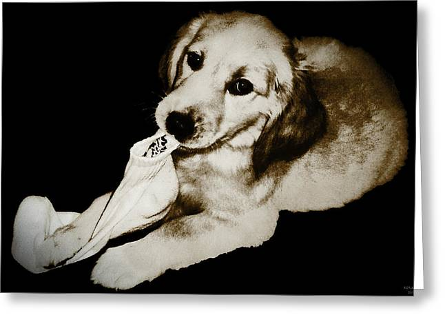 Golden's Best Friend Greeting Card by Rora