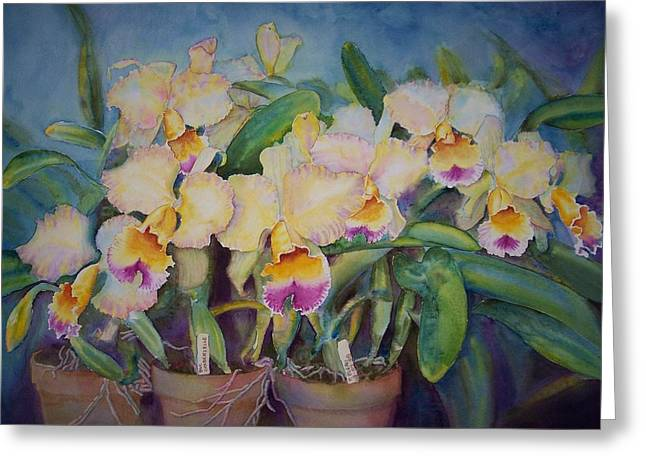 Golden Pink Orchid Greeting Cards - Goldenzelle Greeting Card by Phyllis Bleau