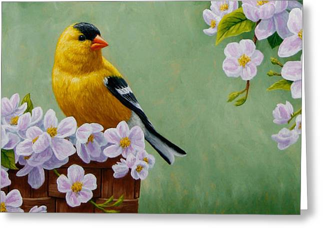 American Goldfinch Greeting Cards - Goldfinch iPhone Case H1 Greeting Card by Crista Forest