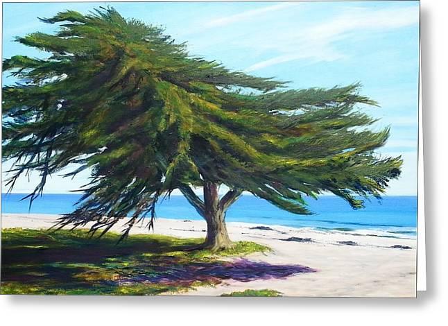 Beach In Santa Barbara Greeting Cards - Goleta Beach Oasis Greeting Card by Jeffrey Campbell