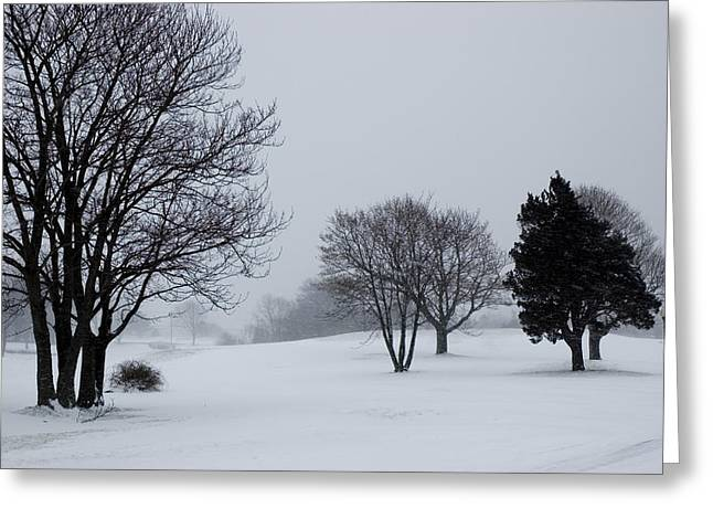 Groton Greeting Cards - Golf Course Covered With Snow Greeting Card by Todd Gipstein