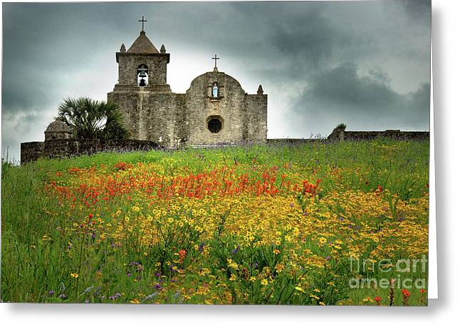 Bluebonnet Landscape Greeting Cards - Goliad in Spring Greeting Card by Jon Holiday
