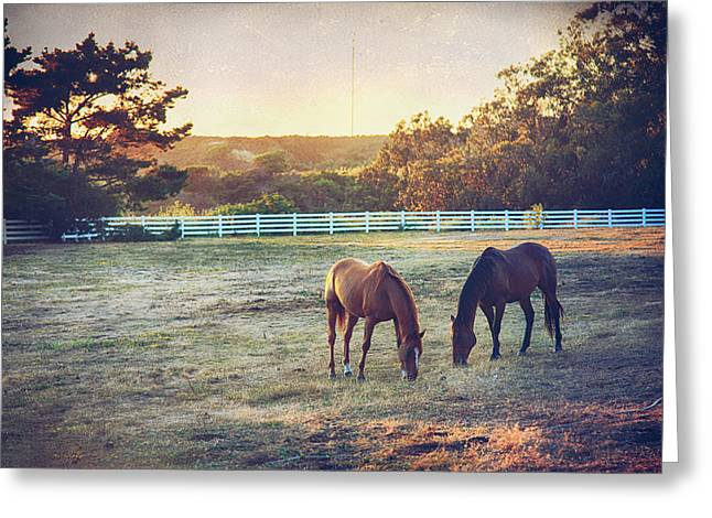 Half Moon Bay Greeting Cards - Good Company Greeting Card by Laurie Search