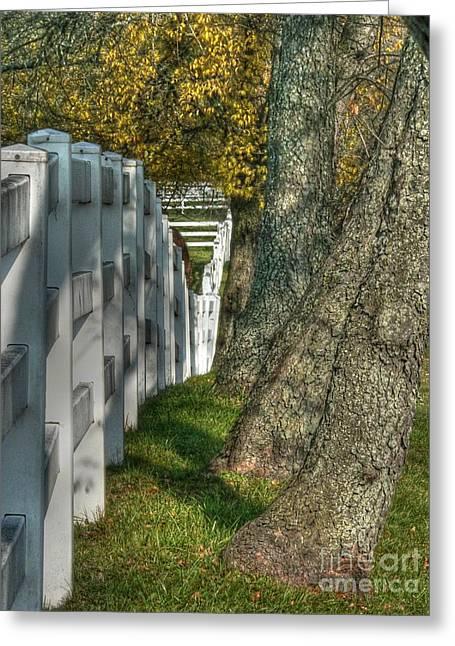 Barrington Greeting Cards - Good fences... Greeting Card by David Bearden
