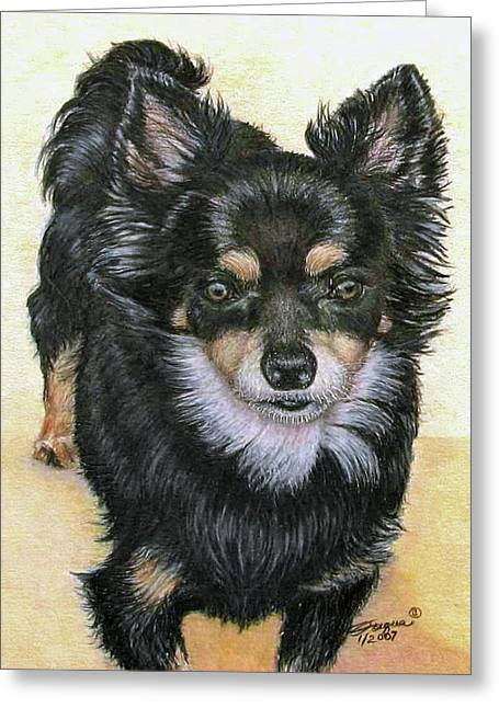 Chihuahua Artwork Greeting Cards - Good Golly Miss Molly Greeting Card by Beverly Fuqua