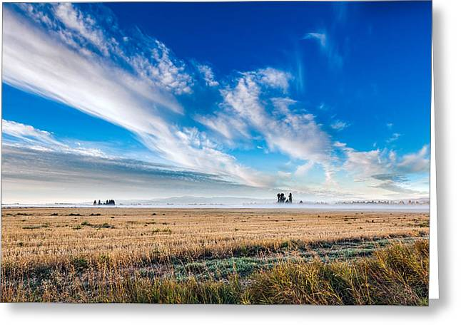Woodland Scenes Greeting Cards - Good Morning Sky Greeting Card by Fran Riley