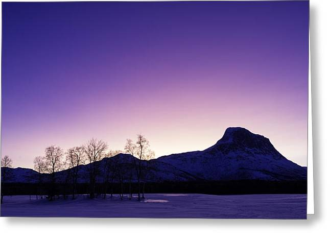 Arctic Greeting Cards - Good morning Greeting Card by Tor-Ivar Naess