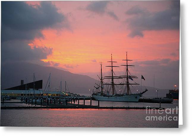 Tall Ships Greeting Cards - Gorch Fock Greeting Card by Gaspar Avila