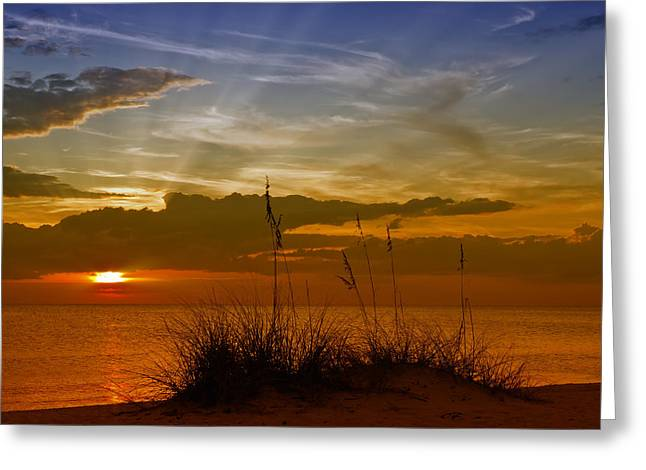 Florida Gulf Coast Greeting Cards - Gorgeous Sunset Greeting Card by Melanie Viola