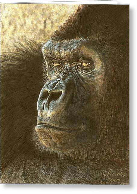 Animals Greeting Cards - Gorilla Greeting Card by Marlene Piccolin