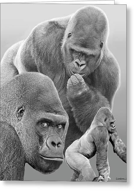 West Africa Greeting Cards - Gorilla Montage Greeting Card by Larry Linton