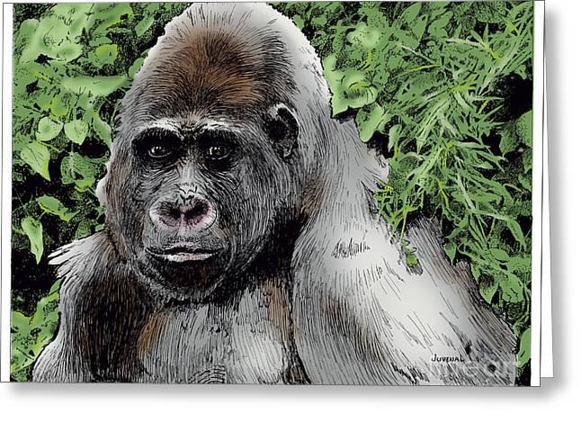 Gorilla Drawings Greeting Cards - Gorilla My Dreams Greeting Card by Joseph Juvenal