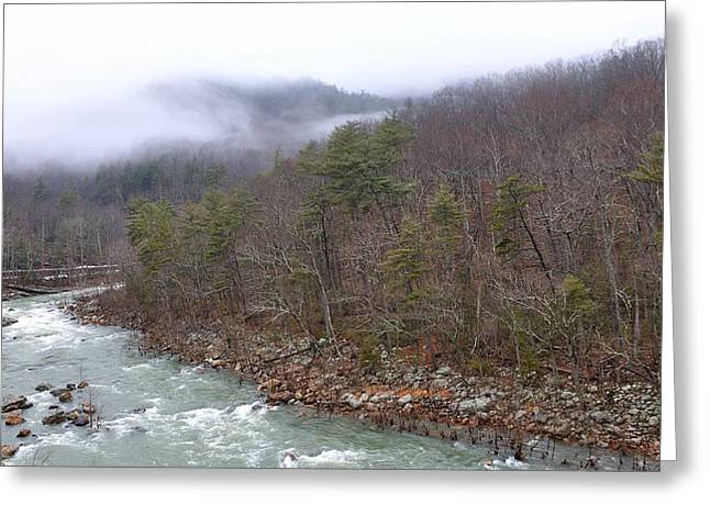 Trout Stream Landscape Greeting Cards - Goshen Pass Virginia Greeting Card by Todd Hostetter
