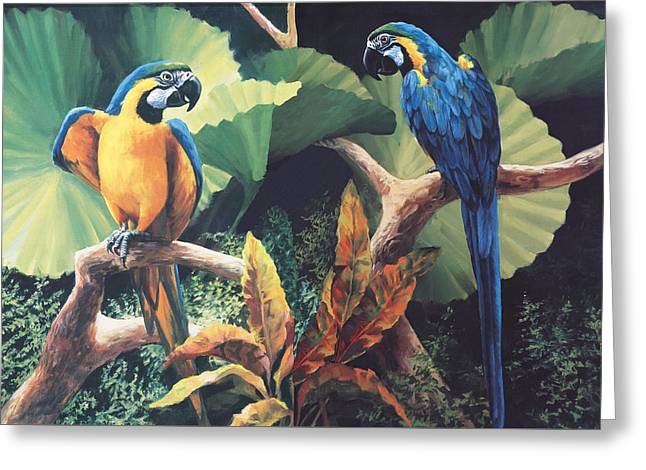 Parrot Greeting Cards - Gossips Greeting Card by Laurie Hein