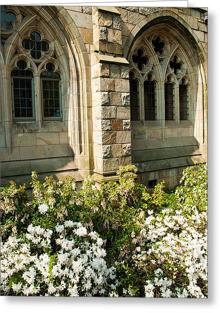 Robert Ford Greeting Cards - Gothic Architectural Windows Yale University Greeting Card by Robert Ford