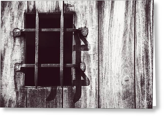 Concept Photographs Greeting Cards - Gothic Gate - Monochrome Greeting Card by F Leblanc