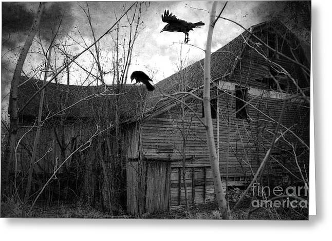 Gothic Surreal Haunting Old Barn With Crows Ravens - Spooky Gothic Black White Ravens Flying Greeting Card by Kathy Fornal