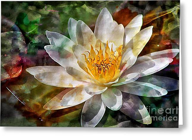 Graceful Lotus Greeting Cards - Grace Greeting Card by Clare Bevan