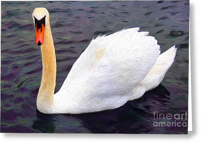 Stream Digital Greeting Cards - Graceful Swan Greeting Card by Mariola Bitner