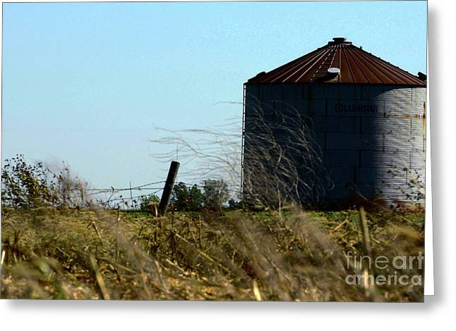 Alan Look Greeting Cards - Grain bin Greeting Card by Alan Look