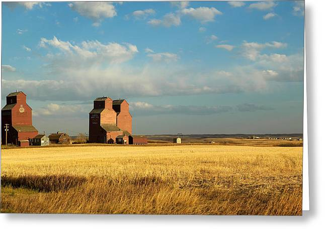 Abandonment Greeting Cards - Grain Elevators Stand In A Prairie Greeting Card by Pete Ryan