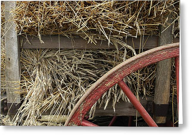 Wooden Wheels Greeting Cards - Grain wagon Greeting Card by Robert Ponzoni