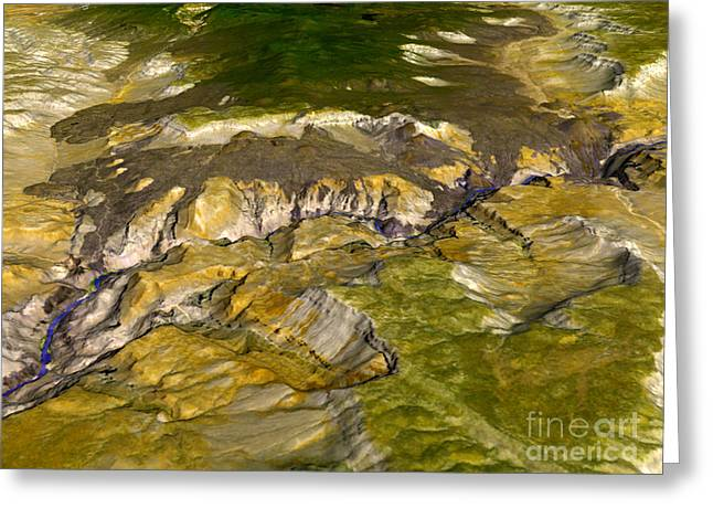 Aster Paintings Greeting Cards - Grand Canyon Greeting Card by Celestial Images