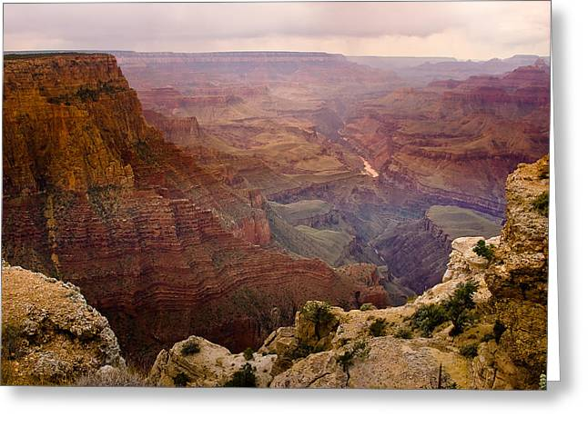 Grand Canyon In The Spring Greeting Card by James BO  Insogna